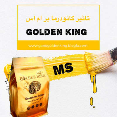 گلنودرما golden king