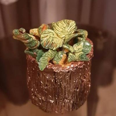 گلدان کاکتوس پیچی
