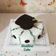 کیک فارغ التحصیلی