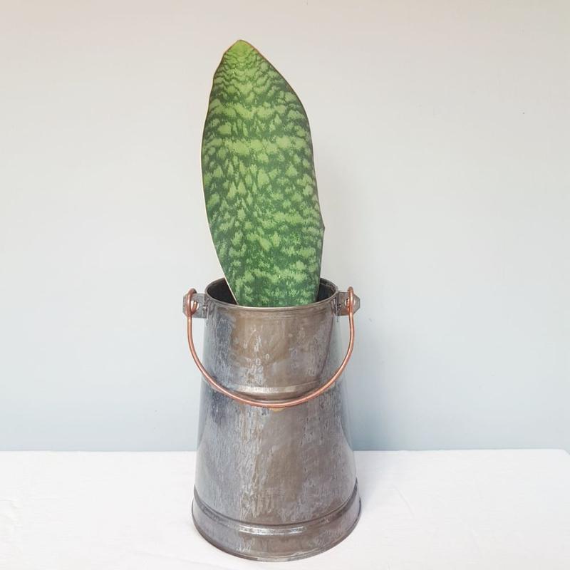 گلدان مخروط دستساز بدون گیاه