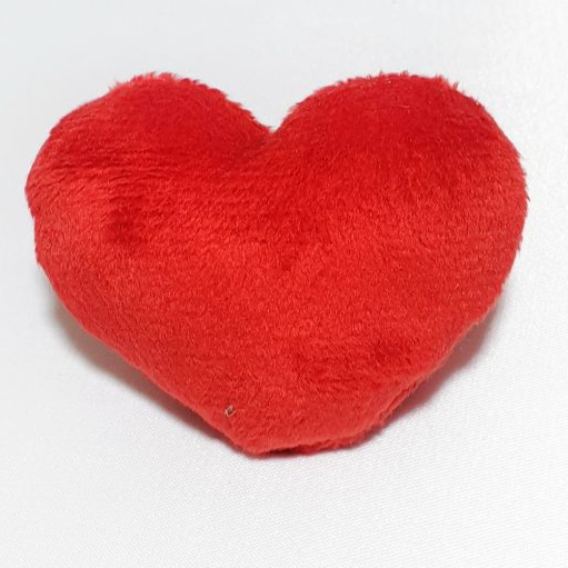 قلب ساده
